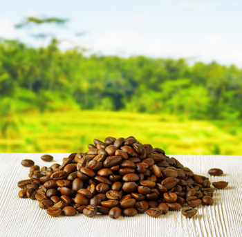 Coffee farmland investing provide high cash flows and international diversification through a renewable resource.
