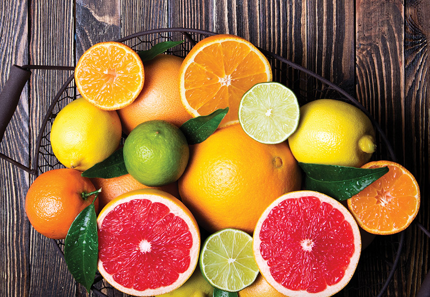 Citrus Fruits in Paraguay – Investments that Grow Naturally